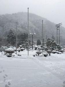 1月11日(木)天川村の積雪状況について