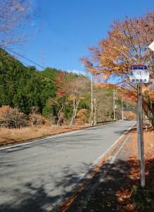 R2.11.19 天川村内の紅葉情報